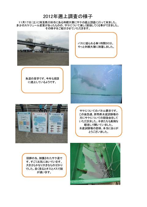 ■サケの遡上調査 報告_ページ_1.png